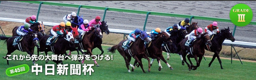 pic_main-vidsual中日新聞杯.jpg